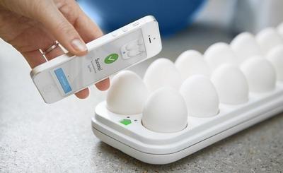 1 eggminder