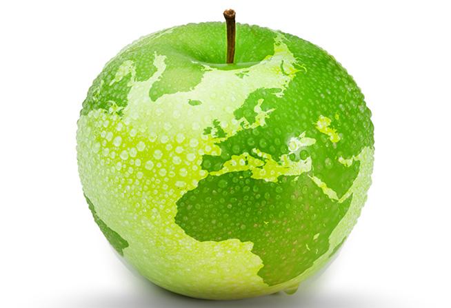 World-Health-Day midi