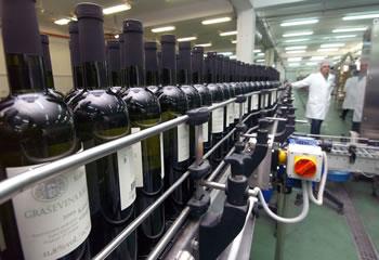 badel-vino-proizvodnja-midi