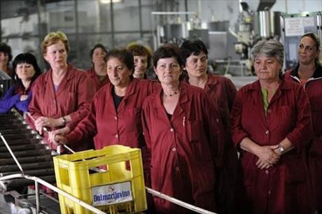 dalmacijavino-radnici-midi