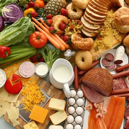 hrana-stol-large-midi