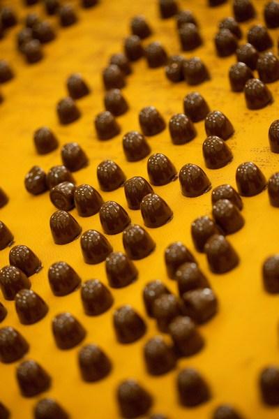 kandit-2012-k2-proizvodnja-kandit-praline-proizvoda