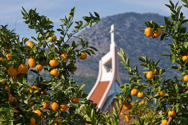 mandarine-metkovic-large-midi