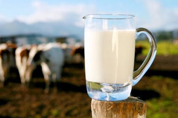 mlijeko midi