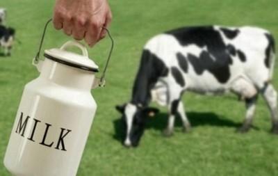 mlijeko-proizvodnja-opg-midi