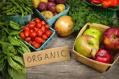 Rusija-organic-foods-eko-midi