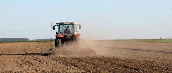 poljoprivreda-polje-ftd