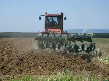 poljoprivredna bruto proizvodnja-midi