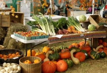 poljoprivredni proizvodi-midi