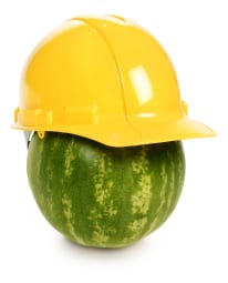 sigurnost-hrane-lubenica-midi