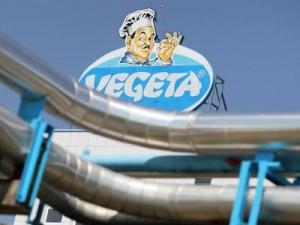 vegeta-logo-midi