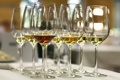 vinistra-izlozba vina i maslinovog ulja-midi