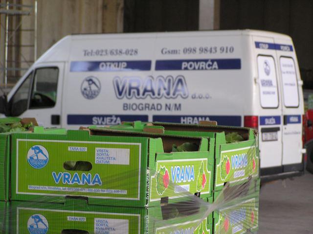 vrana-dostavno-vozilo-large