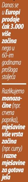 zacini-lead01