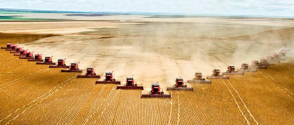 zetva-zitarice-poljoprivreda-svijet-ftd